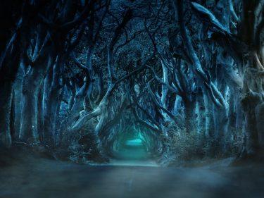 Un acteur de Game of Thrones rejoint un projet vegan qui lance sa propre cryptomonnaie