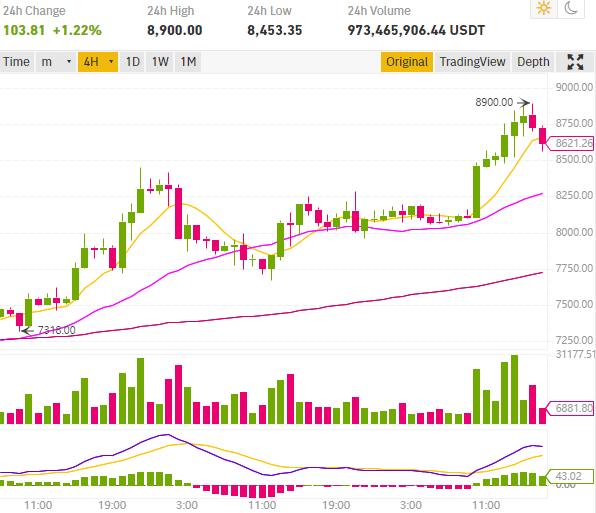 Le cours Bitcoin atteint les 8900$, Ethereum monte à 172$ et Ripple XRP 0,245$