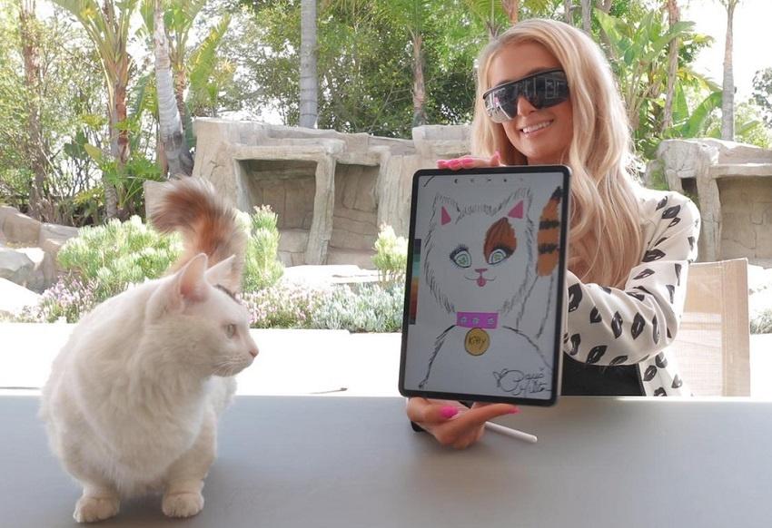 Paris Hilton vend aux enchères le portrait de son chat sous forme de jeton NFT sur la blockchain Ethereum