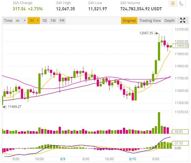 bitcoin 12000 dollars