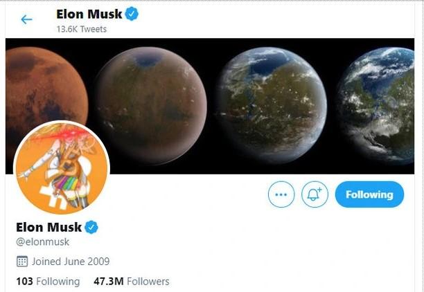Elon Musk avatar twitter bitcoin