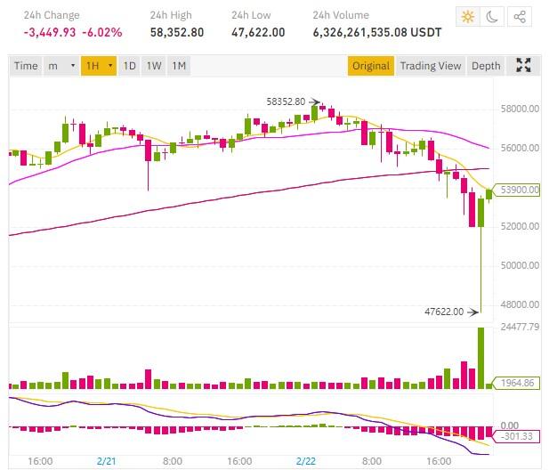 Le cours Bitcoin redescend à 47000 dollars après avoir atteint 58000$
