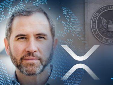 Le PDG de Ripple Brad Garlinghouse dépose une requête pour faire annuler le procès de la SEC