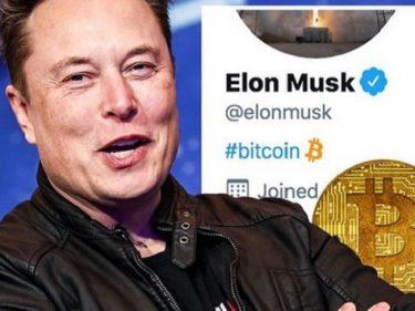 Un bot trading qui achète du BTC dès qu'Elon Musk parle de Bitcoin sur Twitter
