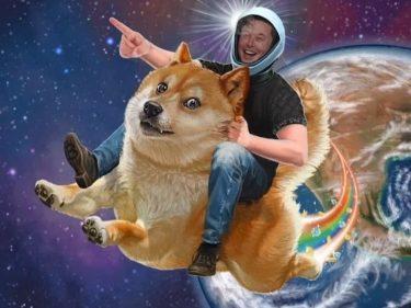 Avant le passage d'Elon Musk dans Saturday Night Live, le cours Dogecoin passe devant Ripple XRP sur CoinMarketCap