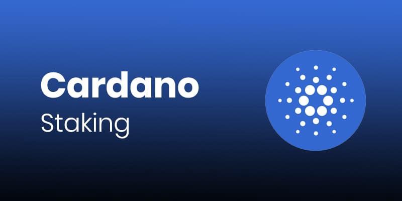 Le staking Cardano (ADA) est disponible sur l