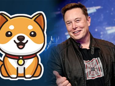 Après Dogecoin et Shiba Inu, Elon Musk fait monter le prix du Baby Doge Coin